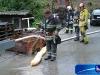 2010_09_12-hydrovenogoz-img_2896